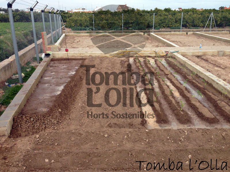 Parcelas Horts Tomba l'Olla