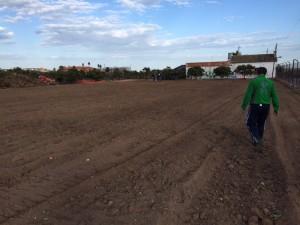 164-ampliacion horts tombalolla meliana