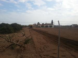 165-ampliacion horts tombalolla meliana