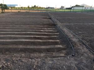 169-ampliacion horts tombalolla meliana